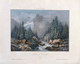 Glacier de Rosenlaui / Wellhorn
