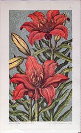 Nr. 3164 Feuerlilie