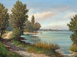 Seelandschaft (Zürichsee?)