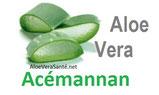 la consommation du gel et non du jus d'Aloe vera a pour effet de diminuer la glycémie, d'améliorer la digestion… Le gel d' Aloe vera apporte aussi de nombreuses vitamines, des minéraux, etc