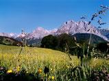 la vallée d'Aspe
