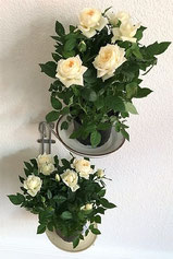 Køkken affaldsstativer til sortering af Affaldssortering system Flower, her som planteholder