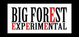 BIG FOREST WEB SHOP