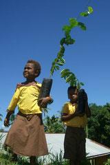 CFP Papua New Guinea