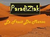 Méharée au désert Maroc