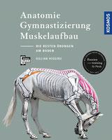 Anatomie – Gymnastizierung – Muskelaufbau, erläutert durch Gillian Higgins.