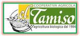 El Tamiso