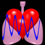 cardiorespiratory monitor Android app