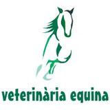veterinaria equina