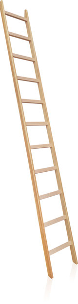 31-011 Timber Leaning Ladder with rungs