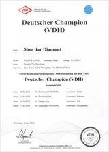 VDH -DEUTSCHER CHAMPION