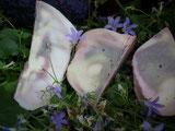Lavendel-Joghurt-Seife