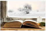Bücher die dich bewegen