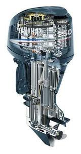 Руководство по ремонту лодочного мотора Yamaha