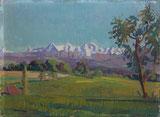 Blick ins Berner Oberland