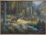 Hirsche auf Waldlichtung