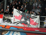 Red Bull Salzburg gegen Bulldogs Dornbirn