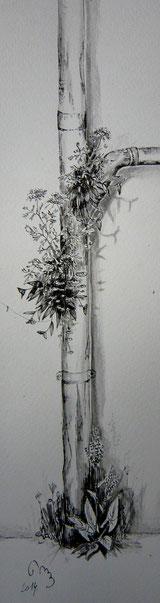 étude de gouttière végétalisée, encre de chine,35x15