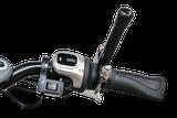 Schalthilfe bei Dreirädern von Van Raam Beratung, Probefahrt und kaufen in Hannover