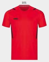 4221 - T-shirt Challenge