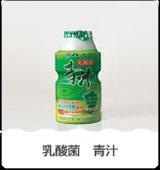 乳酸菌青汁 80ml