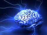 Cerveau et  Omega 3 : SUPER OMEGA - Oméga 3  : les bienfaits santé des oméga 3 - AloeVeraSanté.net LR Health