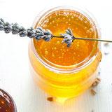 Honey: Beyond the Bear