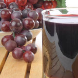 Polyphenol-Rich Foods to Start Eating Today