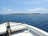 竹富島、カヤマ島でのんびりダイビングしてきました。