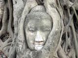 Impressionen Die Seele Thailands
