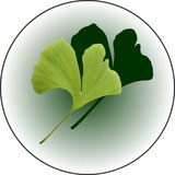 Logo der Naturheilpraxis Koutecky, Naturheilkunde und Osteopathie in Zusamaltheim im Landkreis Dillingen an der Donau