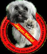 Initiative gegen eine Fellzeichnung, die Hunden gesundheitliche Schäden zufügen kann