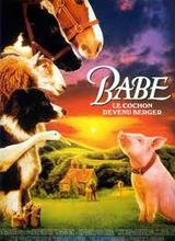 animaux film babe le cochon