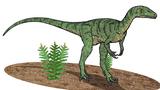 Bild  eines Eoraptor