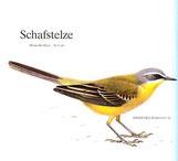 BiHU Vogelführer Natur Hergenrath Schnatterente