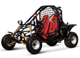 CLICK HERE FOR GK SPIDER 150cc GO KART CATALOG
