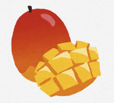マンゴーのイラスト リンクあり。