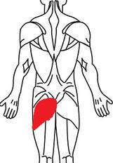 椎間板ヘルニアで腰が痛い奈良県香芝市の女性