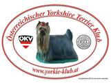 Österr. Yorkshire Terrier Klub