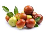 Kaltgepresstes Jojobaöl - Rohstoff für die natürliche & vegane Lippenpflege von lipfein