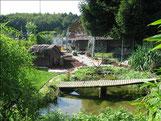 Sicht aus dem Bambuswäldchen