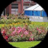 Schiller Gartengestaltung - Garten und Landschaftsbau Cuxhaven - Gewerbekunden - Dachbegrünung