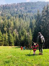 Wanderung zum Hohlen Stein bei Sulzberg