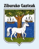 Ziburuko Gazteak - Club de pelote de Ciboure - Pelote basque