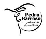 Logotipo de Pedro Barroso