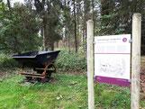 Habichtswaldsteig  H 1