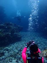 石垣島でのんびりダイビング「水中記念撮影」