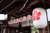 平野神社の桜の紋
