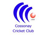 Cossonay Cricket Club logo
