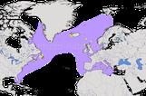 Karte zur historischen Verbreitung des Riesenalks (Alca impennis)
